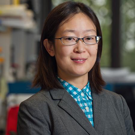 Yanting Zhao, PhD